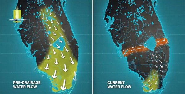 Historic vs. Current Everglades System Water Flow - 4ocean Everglades Bracelet