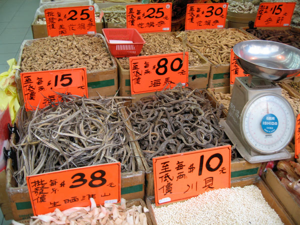 Dried Pipefish and Seahorse in Hong Kong Market - Project Seahorse - 4ocean Seahorse Bracelet
