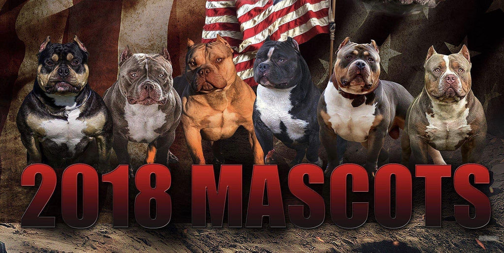BECOME AN OFFICIAL 2019 BULLY KING MAGAZINE MASCOT!-BULLY KING Magazine