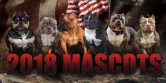BECOME AN OFFICIAL 2019 BULLY KING MAGAZINE MASCOT!