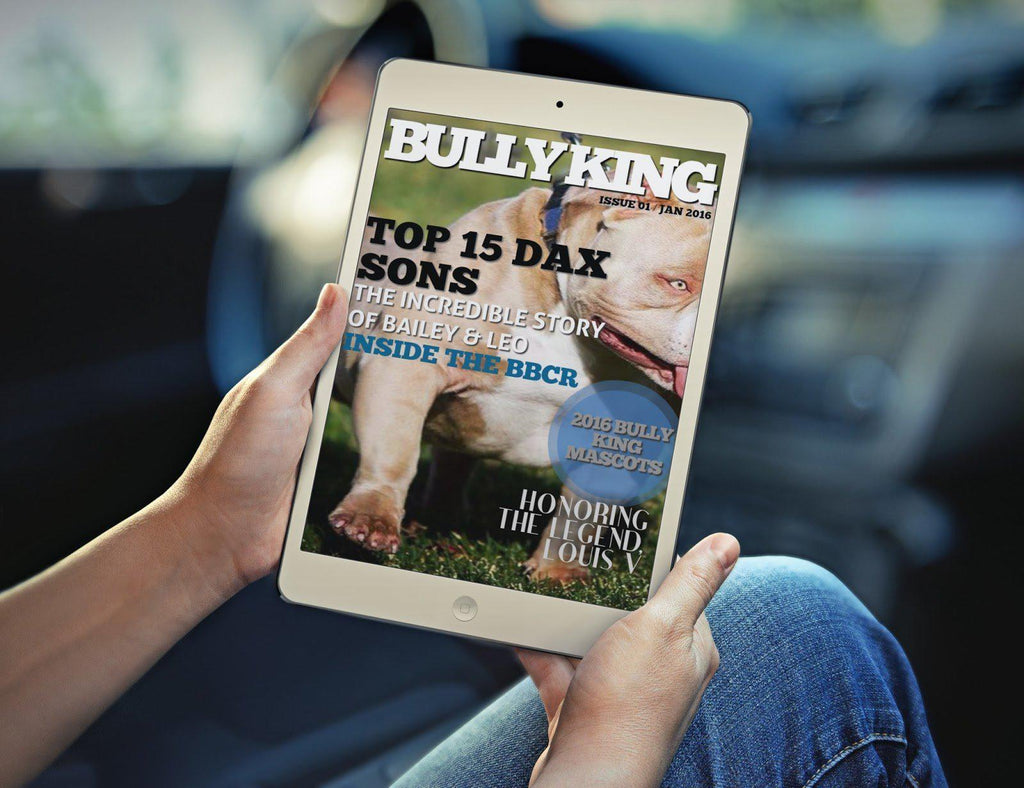 ADVERTISING | GET FEATURED IN THE NEXT ISSUE-BULLY KING Magazine
