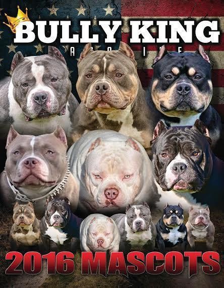 Single Issues-BULLY KING Magazine