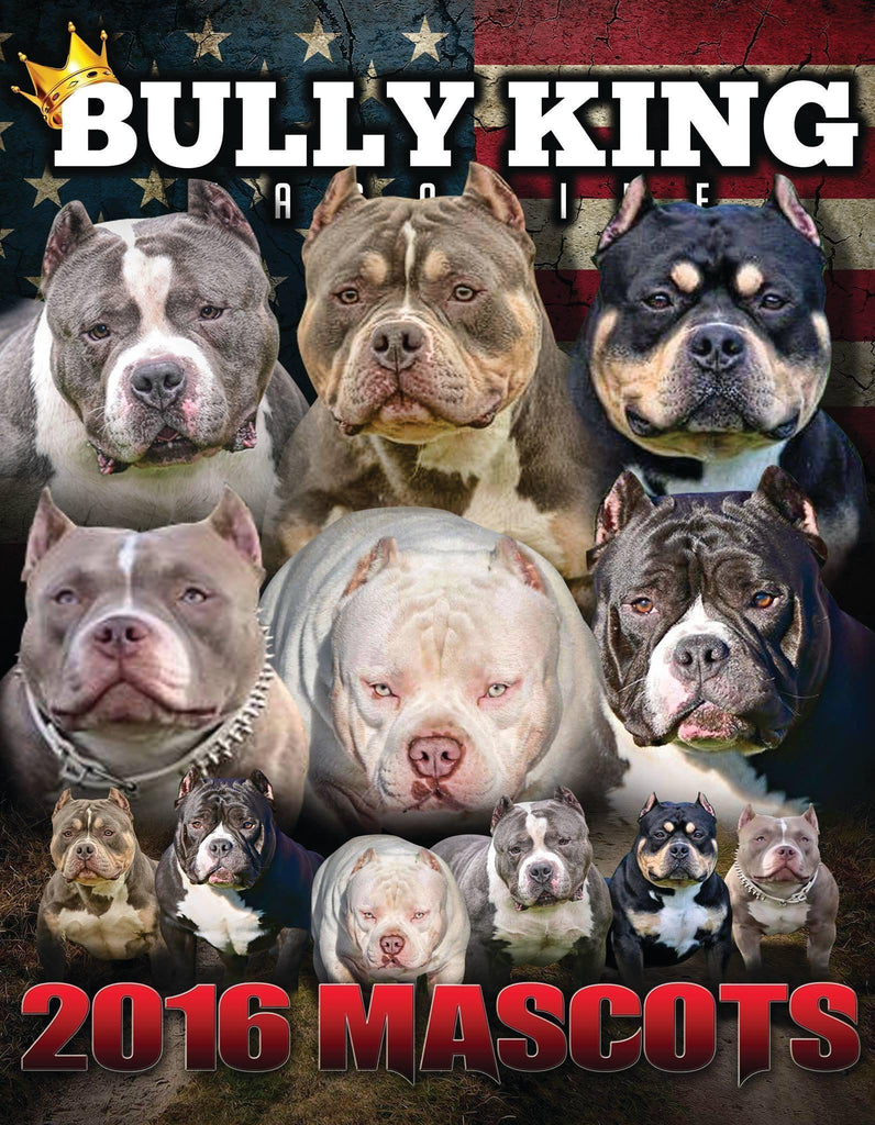 Year Subscription | 6 Issues-BULLY KING Magazine