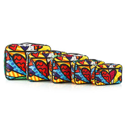 Britto A New Day Packing Cubes 5pc Set