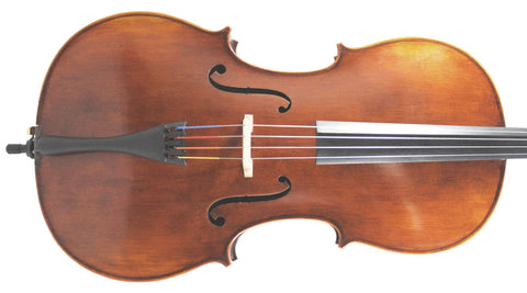 Concertante cello outfit 4/4 Strad model (Eastman 305)
