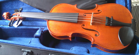 Five string Gliga violins 4/4 (violin only)