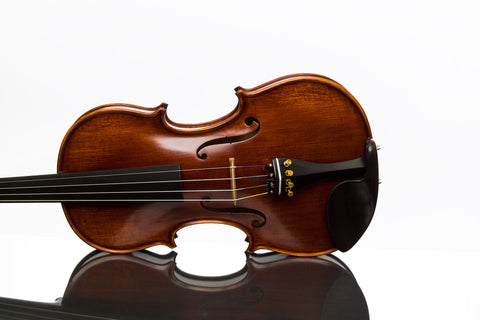 Gliga Gama violin suggested superior package 4/4