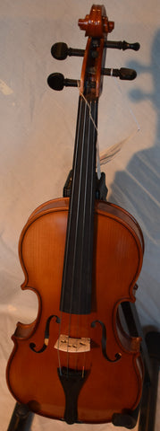 Strunal 220 violin outfit 4/4 - dominant strings