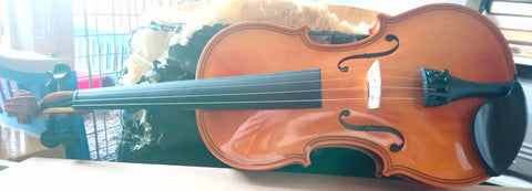 Strunal 401 violin - Maggini model