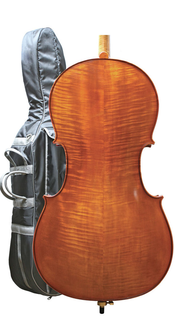 "Westbury cello outfit (""Gold set up"", Jargar strings)"