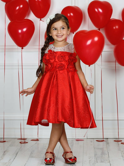 Girls Mesh Embroidered Rose Applique Holiday Dress - Girls Fall Dressy Dress