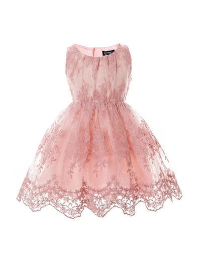 Girls Blush Pink Lace Vintage Inspired Dress - Pink / 2T - Girls Fall Dressy Dress