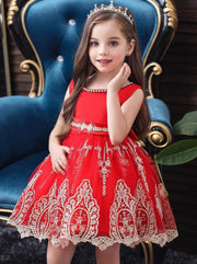 Girls Elegant Lace Trimmed Tulle Dress - Girls Fall Dressy Dress