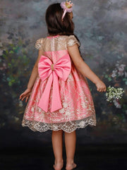 Girls Lace Embroidery Dress - Girls Spring Dressy Dress