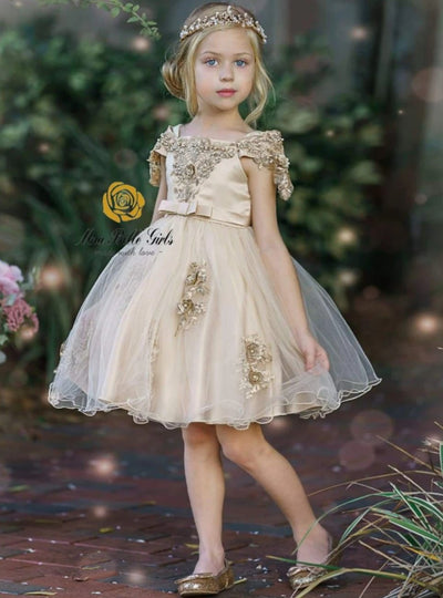 Girls Off Shoulder Lace Applique Holiday Dress - Girls Fall Dressy Dress