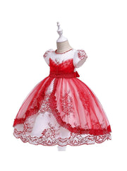 Girls Puffy Sleeve Embroidered Lace Applique Special Occasion Dress - Girls Spring Dressy Dress