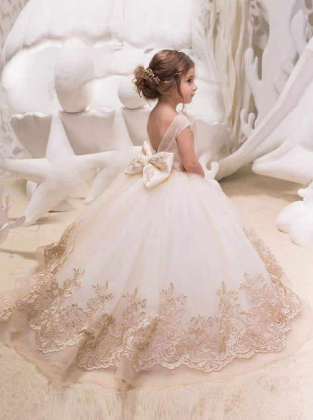 Girls Sleeveless Floral Embroidered Tulle Ball Gown Communion Flower Girl Dress - Girls Gown