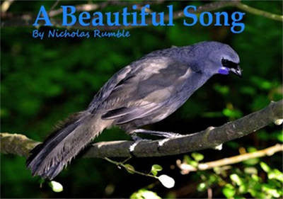 A beautiful Song by Nicholas Rumble