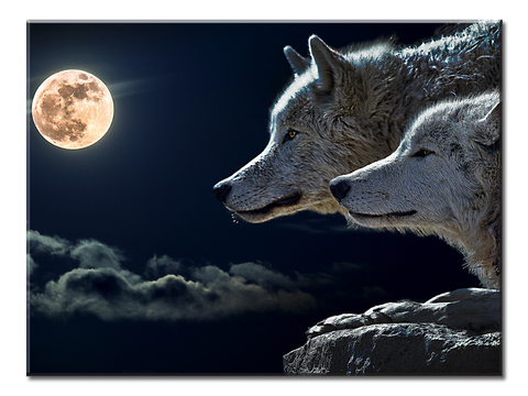 Wolves-Moon Canvas Wall Art | Native American Canvas Wall Art Large One Panel