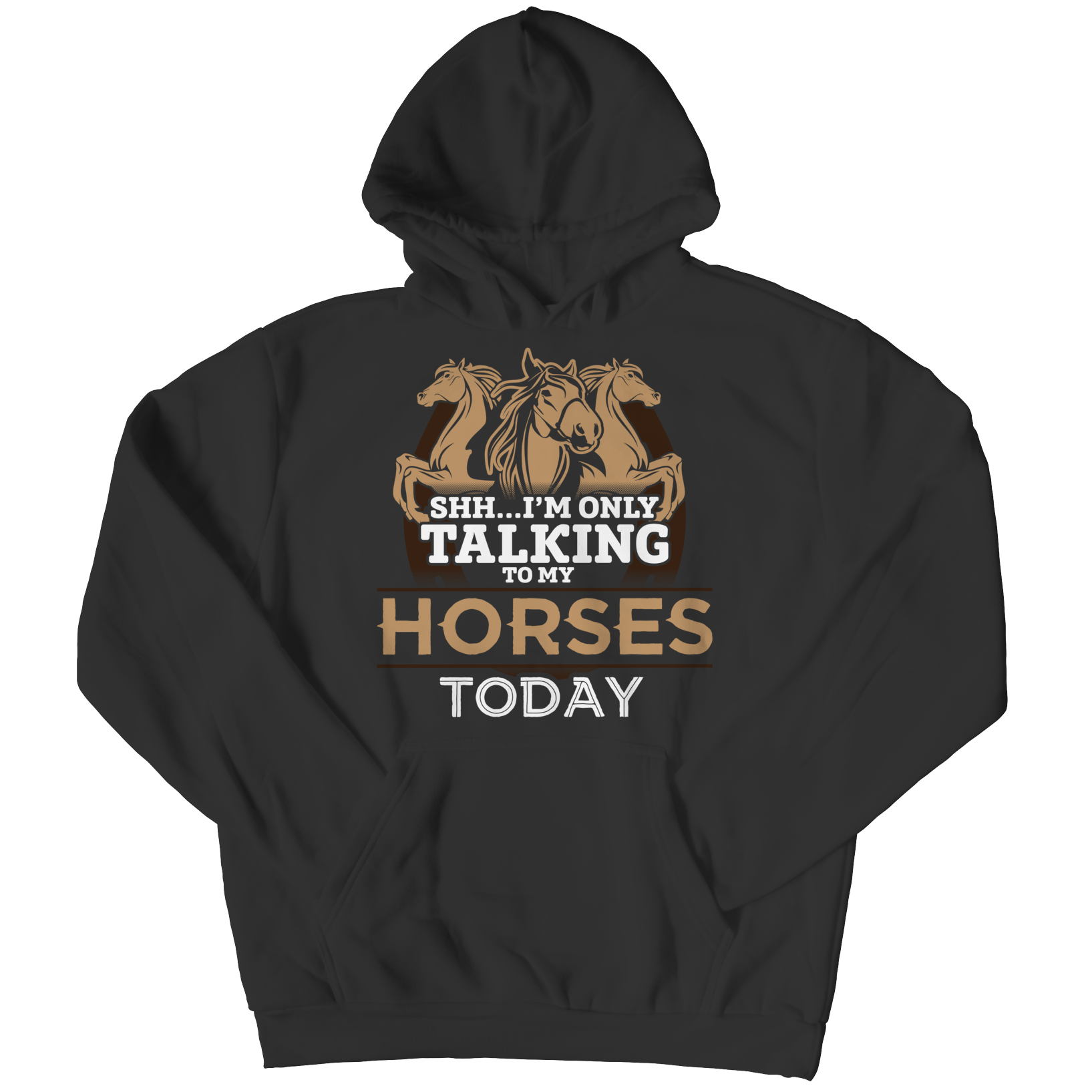 I'm Only Talking To My Horses Today Hoodie