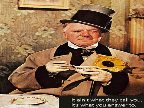 W.C. Fields - Teapot Sayings - Canvas Wall Art - Large One Panel