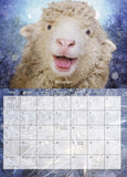 Sale!                   2017 Sweet Pea & Friends Calendar