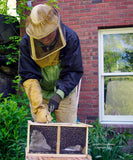 Sponsor a Honey Beehive-10,000 Bees and their Queen Into the World