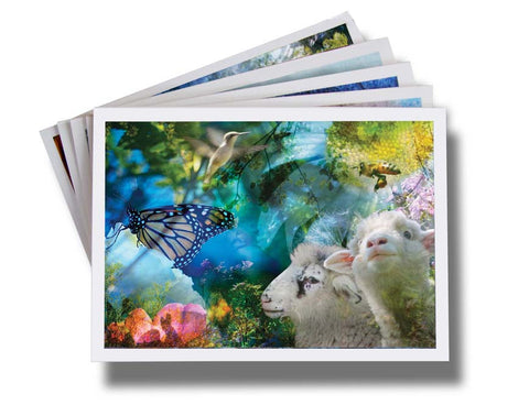"Art Card Collection~ ""Brave Little Finn"""
