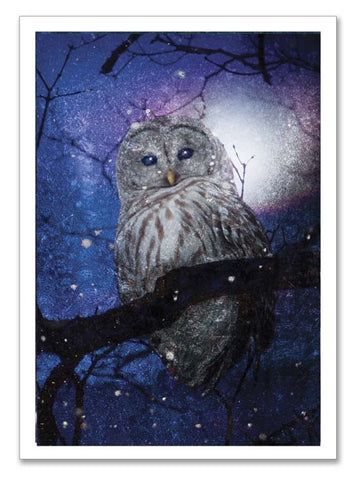 "Storybook Art Card ~""Forest Owl"""