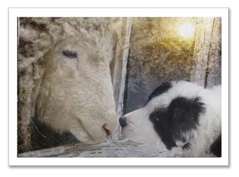 "Storybook Art Card ~""Touching Noses"""