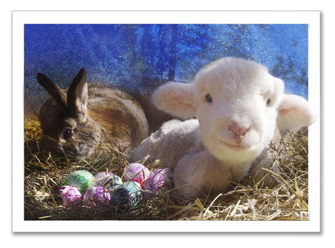 "Storybook Art Card ~""Finn's Easter"""