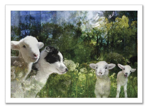 "Storybook Art Card ~""New Friends"""
