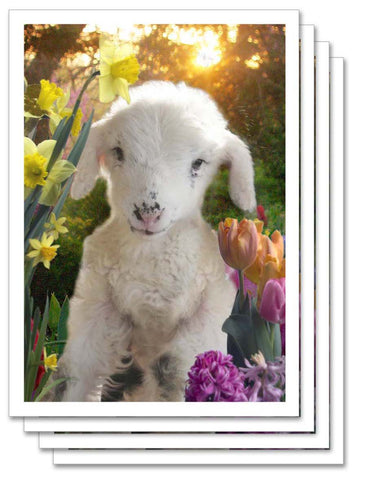 Art Card Collection- Moonrise Farm Easter
