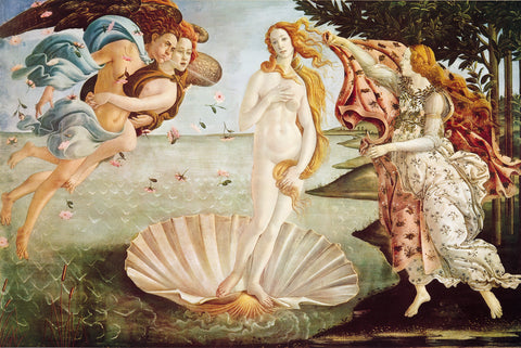 AP651 Botticelli - Birth of Venus, 24 x 36