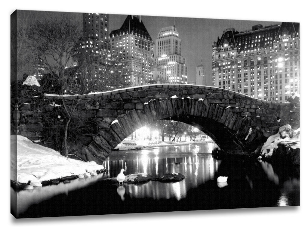 CNV223 - New York Central Park - Winter Scene, 16 x 20