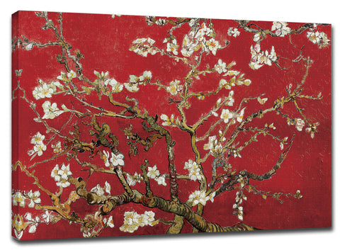 CNV233 - Van Gogh - Almond Blossom in Red, 24 x 36