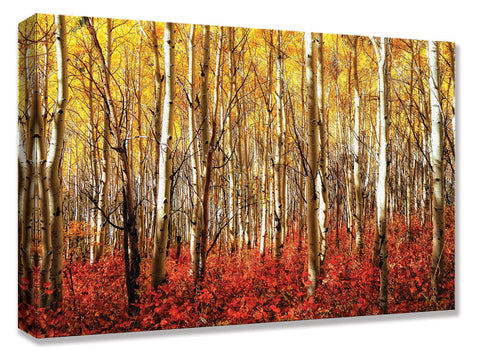 CNV235 Aspen Grove Red 24x36