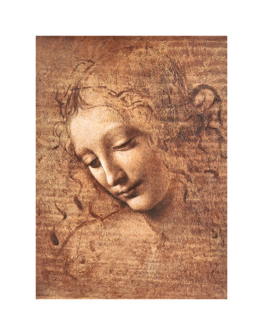 PD866 - Da Vinci - Female Head (La Scapigliata), 11 x 14