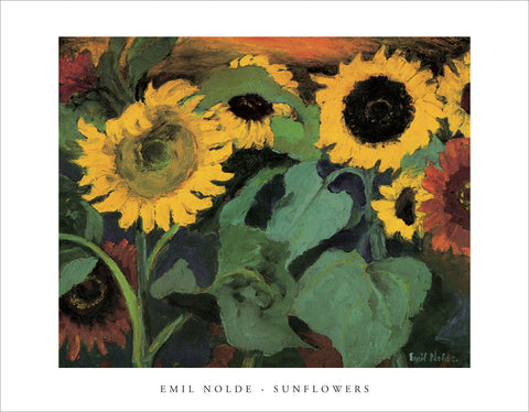 PN887 - Nolde, Sunflowers, 11 x 14