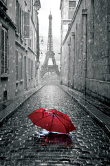 NY893 - Paris Umbrella  24x36