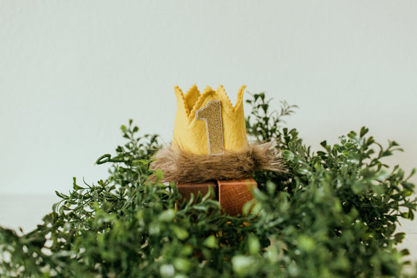 Wild Things Mini Crown
