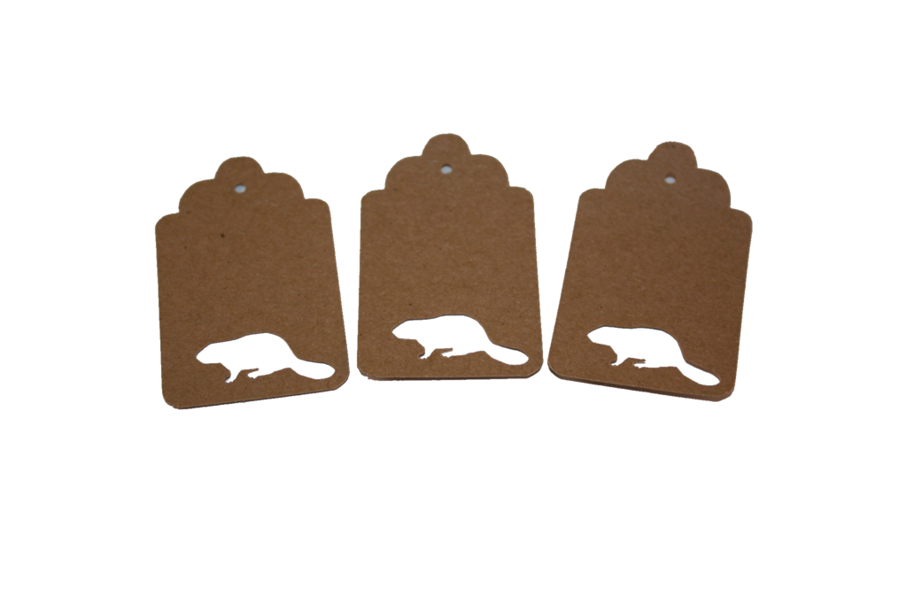 Beaver, Animal, Tag, Gift Tag, NatureCuts