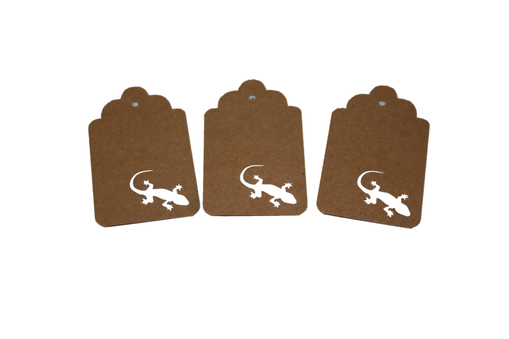 Gecko, Reptile, Animal, Tag, Gift Tag, NatureCuts