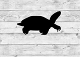 Painted Turtle Vinyl Stickers