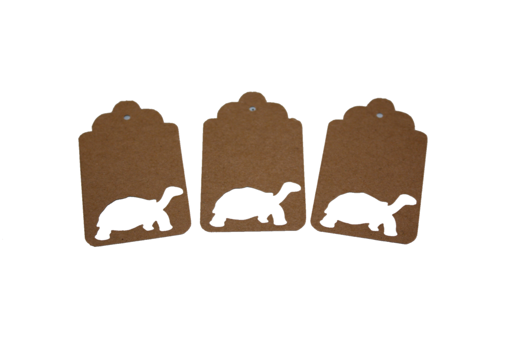 Tortoise, Turtle, Animal, Tag, Gift Tag, NatureCuts