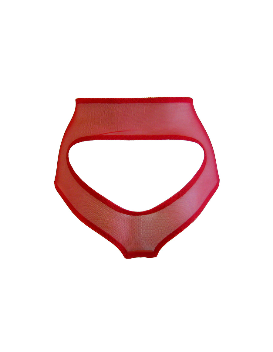 Ryan brief - red