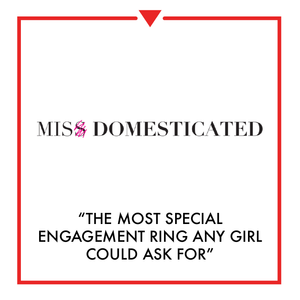Article on Miss Domesticated