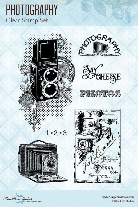 Blue Fern Stamp - Photography