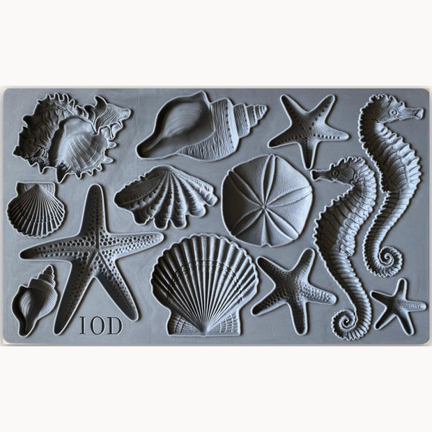 Seashells Decor Mould by IOD - Iron Orchid Designs