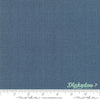 Painted Meadow - Teal 48626-52 - Robin Pickens - Moda
